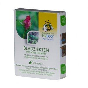 Pireco Bladziekten 24 capsules