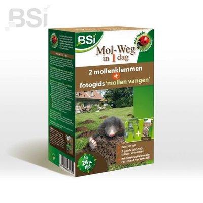 BSI Mol-weg in 1 dag
