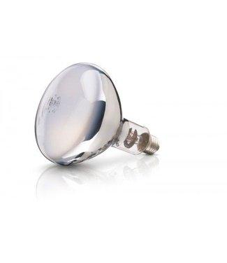 Lamp 250W wit Philips