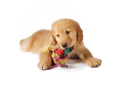 Speelgoed Bal voor Puppy met Touwtjes
