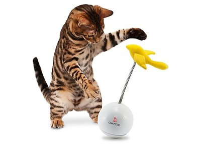 Interactief & Bewegend Kattenspeelgoed