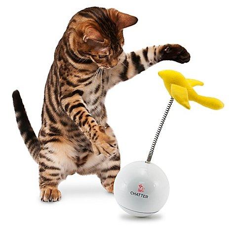 Bewegend Kattenspeelgoed Chatter