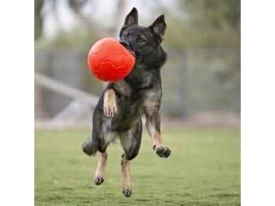 Jolly Sterke Voetbal voor Honden