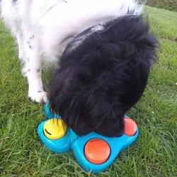Puppy Speelgoed Interactief