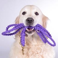 Exclusieve Gevlochten Hondenriem van Touw in Giftbox