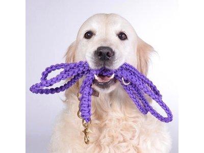 Hippe Handgemaakte Hondenriem van Zeiltouw in Veel Kleuren