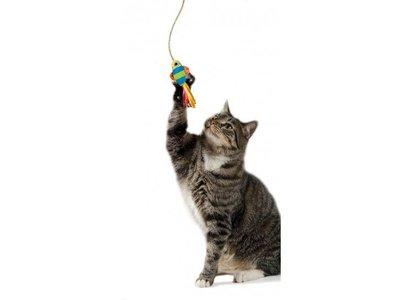 Petstages Kattenspeelgoed Vis aan Zuignap