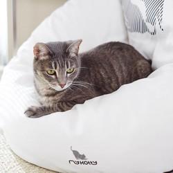 Trendy en Comfortabel Kattenbed