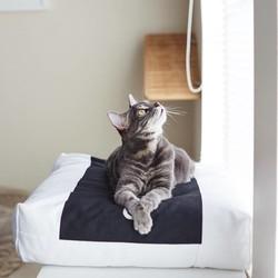 Comfortabel Kussen voor Katten