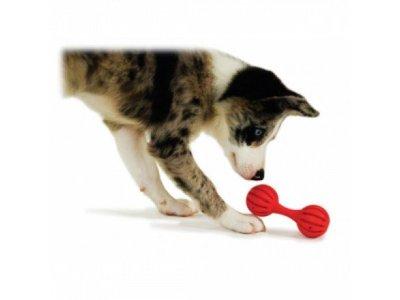 Busy Buddy Puppy Speelgoed Bot voor Traktaties