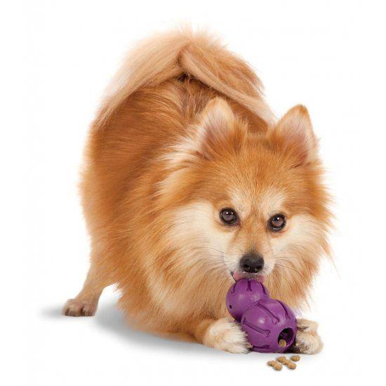 Honden Kauwspeeltje Barnacle