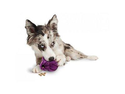 Busy Buddy Honden Kauwspeeltje Barnacle