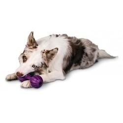 Honden Kauwbot voor Brokjes