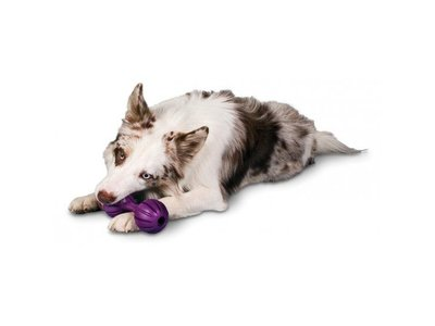 Busy Buddy Honden Kauwbot voor Brokjes