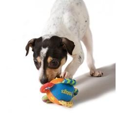 Kleurrijke Knuffel voor Kleine Honden