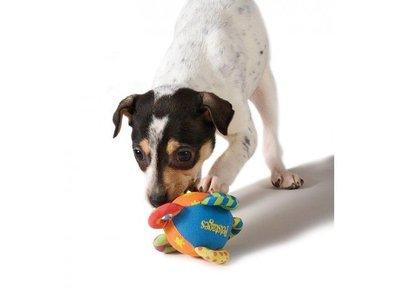 Petstages Kleurrijke Knuffel voor Kleine Honden