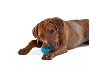 Orka Tennisbal voor Honden Extra Sterk