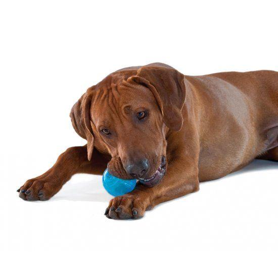 Tennisbal voor Honden Extra Sterk