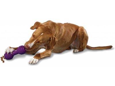 Busy Buddy Sterk Honden Speelbot Voor Snacks