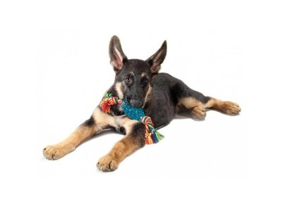 Petstages Sterk Kauwspeeltje voor Pups