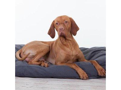 Rebel Petz Groot Basic Hondenkussen in Grijs