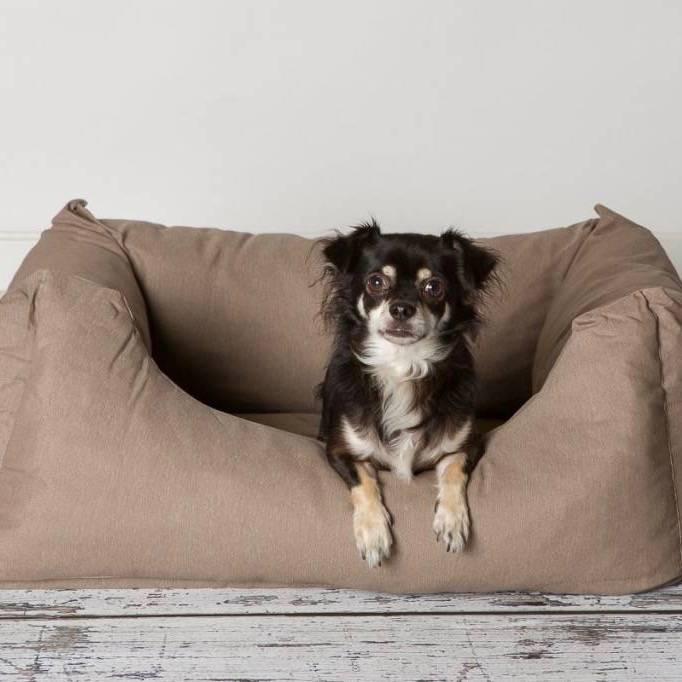 Hondenmand voor Kleine Honden