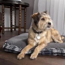 Groot en Luxe Hondenbed in Grijs en Bruin