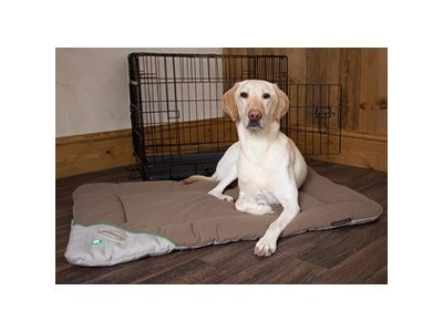 Insect Shield Honden Benchmat tegen Vlooien en Teken