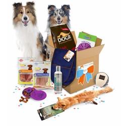 Max Happy GiftBox voor Honden Luxe