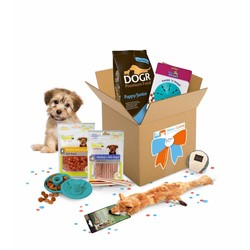 Max Happy GiftBox voor Puppy Basic