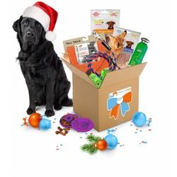 December GiftBox voor Honden Large
