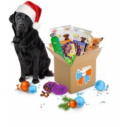 December GiftBox voor Honden Medium