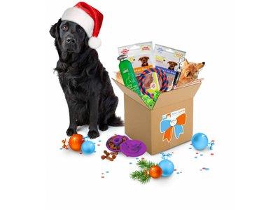 Het leukste Kerst Cadeau voor Honden