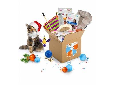 Het leukste Sinterklaas of Kerst Cadeau voor Katten
