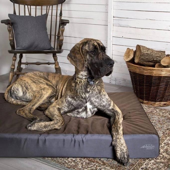 Sterk en Orthopedisch Hondenbed