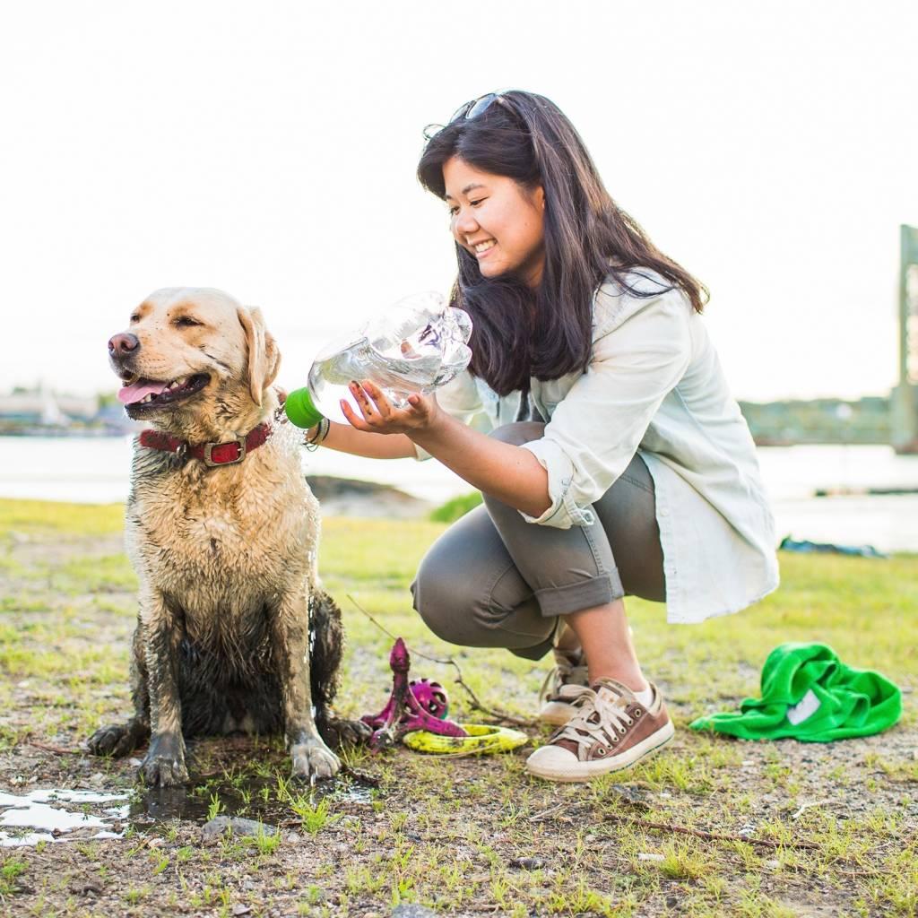 Reisdouche voor Honden