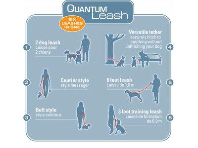 Kurgo Quantum Hondenriem 6 functies in 1