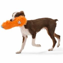 Sterk Speelgoed  voor Kleine Honden