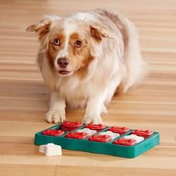 Honden Train Spel voor Snacks