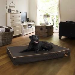 Stoer Zwart Hondenbed Insectwerend