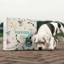 Max&Luna SnuffelBox voor Puppies