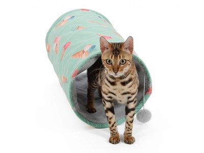 Zomerse Tunnel voor Katten 'Ice Cream'