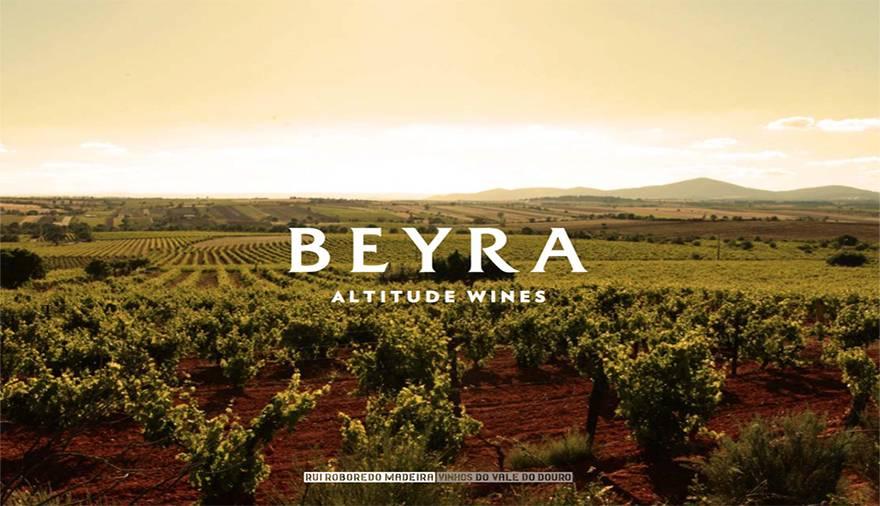 Beyra wijngaarden