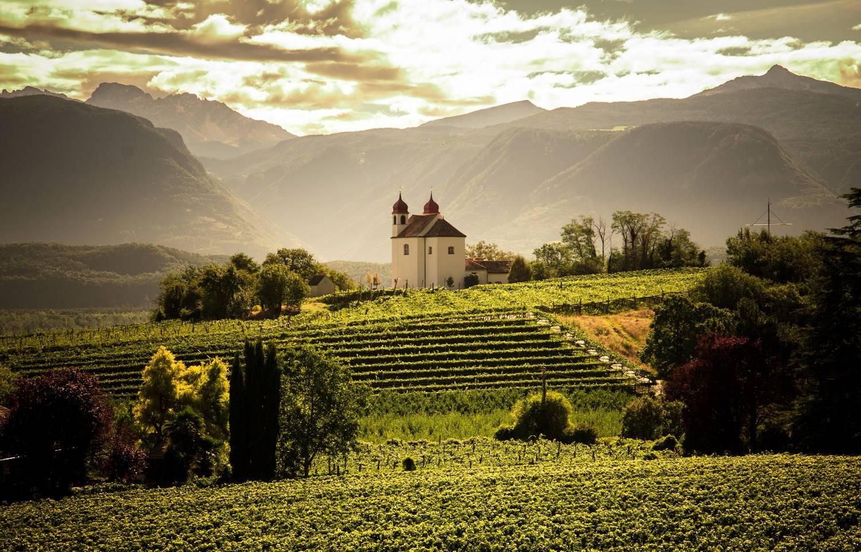Wijngaarden van St Michael Eppan