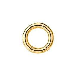 18K Vergulde Segment Ring - XL