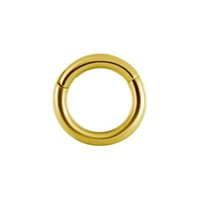 Gold Plated Segment Ring - Basic (1.2mm)