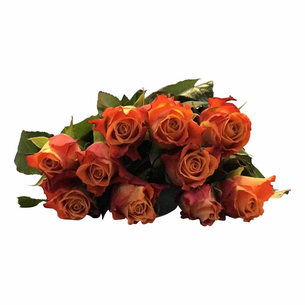 orange rosen bestellen rosen online bestellen bezahlbare bezahlbare. Black Bedroom Furniture Sets. Home Design Ideas