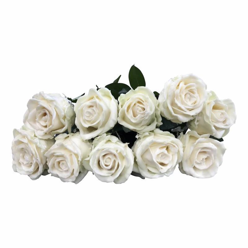5 Wachs Rosen P640(Weiß)