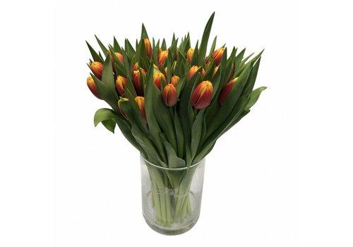 10 Tulpen Dow Jones