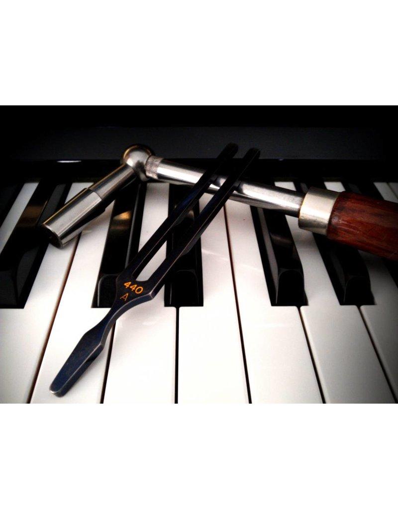 PianoStube Stimmen eines Flügels